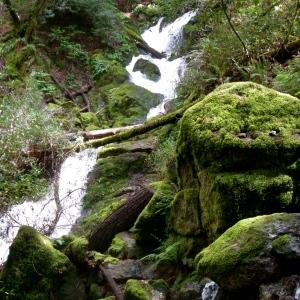 rock monster, cataract falls trail